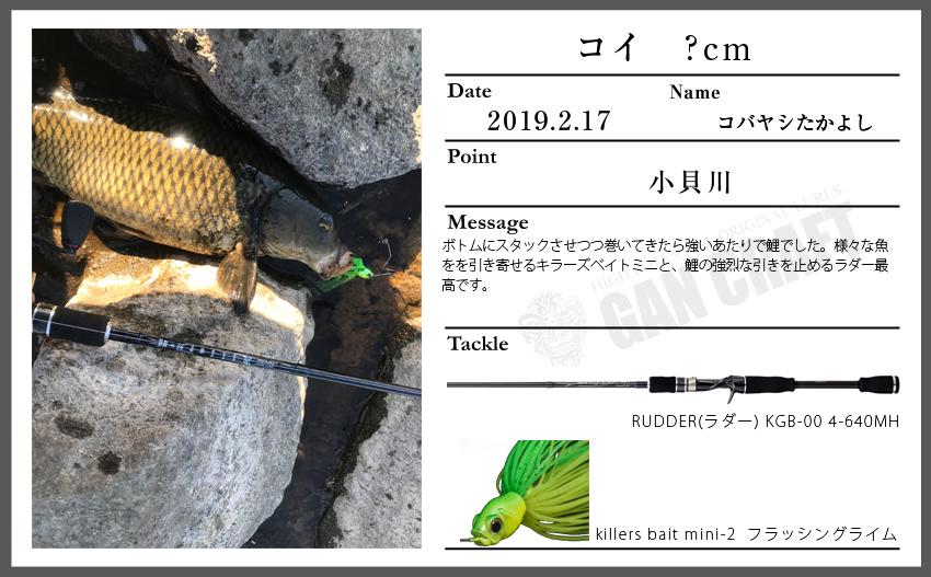 n190217_1