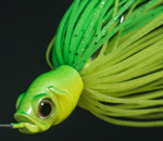 killersbait_mini2 (#11 Flushing Lime)